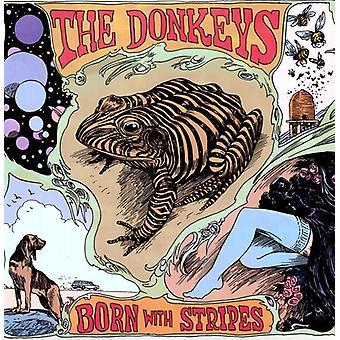 Donkeys - Born with Stripes [Vinyl] USA import
