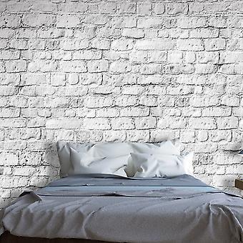 Fototapet - White brick