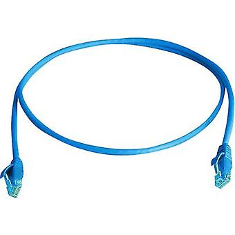 Telegärtner RJ45 Network cable, patch cable CAT 5e U/UTP 3.00 m Sky blue Flame-retardant, Halogen-free