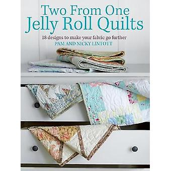 Two from One Jelly Roll Quilts - Designs to Make 20 Adorable Small-Sca