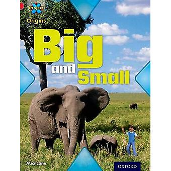 Project X Origins - Red Book Band - Oxford Level 2 - Big and Small - Big