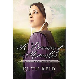 Sonho de milagres (a série de maravilhas Amish)