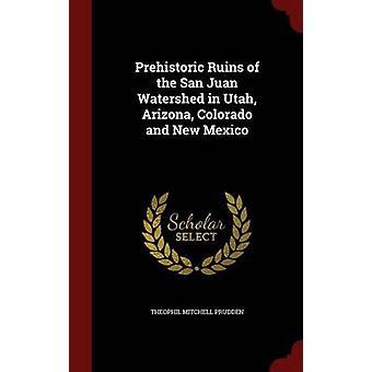 Ruines préhistoriques du bassin San Juan dans le Colorado Arizona Utah et Nouveau-Mexique par Mitchell Prudden & Theophil