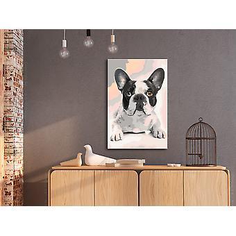 Tee se itse -kangasmaalaus - Ranskalainen Bulldog-40x60