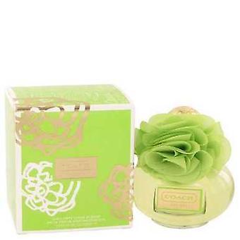 Coach Poppy Citrien bloesem door coach Eau de parfum spray 3,4 oz (vrouwen) V728-518704