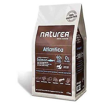 Naturea Atlantica Fish (Dogs , Dog Food , Dry Food)