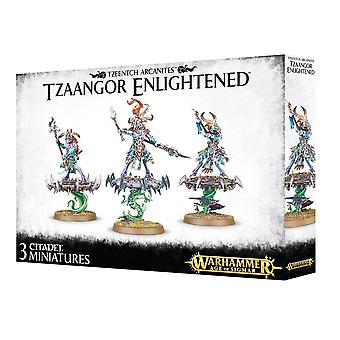 Tzeentch Arcanites Tzaangor Enlightened, Warhammer 40,000 Age of Sigmar, 40k
