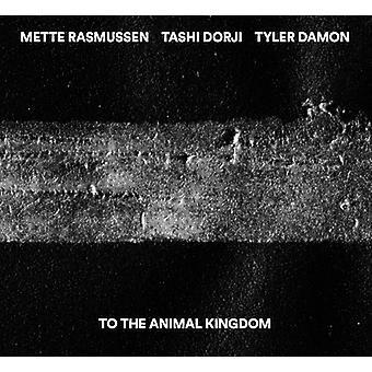 Dorji, Tashi / Damon, Tyler / Rasmussen, Mette - To the Animal Kingdom [CD] USA import