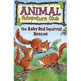 The Baby Red Squirrel Rescue Animal Adventure Club 3 by Michelle Sloan & Illustrated by Hannah George