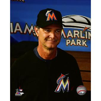 Don Mattingly 2017 akcji Photo Print