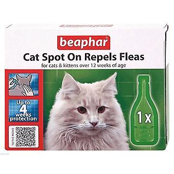 Na miejscu kota Beaphar odpycha pchły dla kotów i kociąt