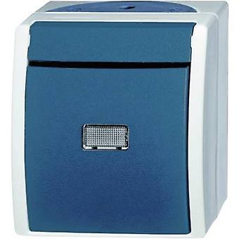 Busch-Jaeger 2601/6 WGL-53 Wet room switch product range Toggle switch Ocean (surface-mount) Blue, Green