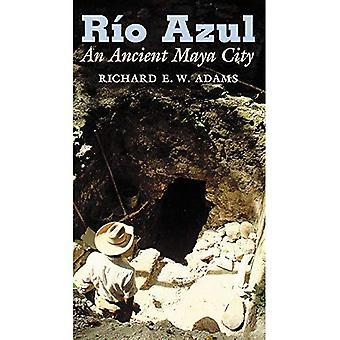 Rio Azul: Eine antike Maya-Stadt