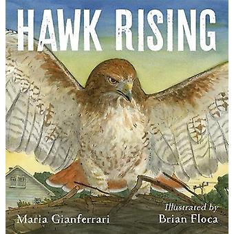 Hawk Rising by Maria Gianferrari - 9781626720961 Book