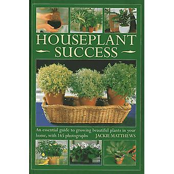 Houseplant Success by Jackie Matthews