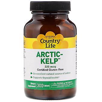 Country Life, Arctic-Kelp, 225 mcg, 300 Tablets