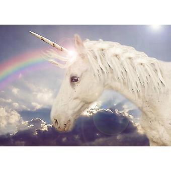 Tapet väggmålning Unicorn regnbåge