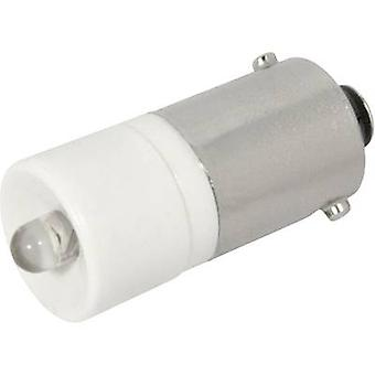CML LED indicator light BA9S Warm white 12 V DC, 12 V AC 1440 mcd 1860225 L3