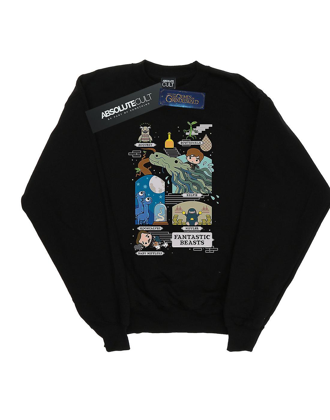 Fantastic Beasts Boys Chibi Newt Sweatshirt