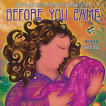 Before You Came