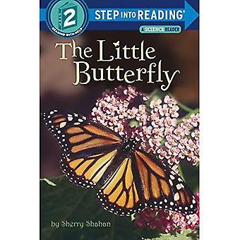 A pequena borboleta (entra leitura)