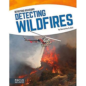 Détection des feux de forêt (détection des catastrophes)