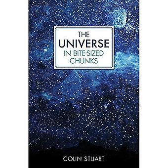 Universum i bita-stora bitar