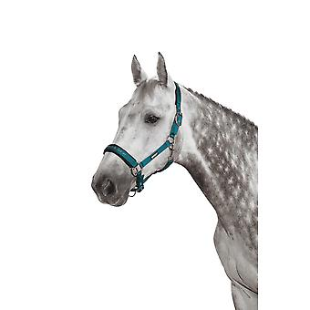 Eskadron Classic Sports Double Pin Glossy Headcollar - Teal Blue