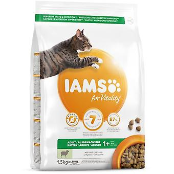 IAMS Proactive Health Lamb and Chicken (Cats , Cat Food , Dry Food)