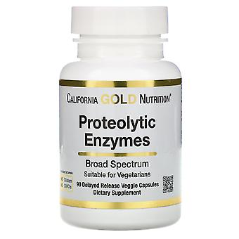 California Gold Nutrition, Proteolytic Enzymes, Broad Spectrum, 90 Delayed Relea