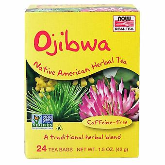 Maintenant Foods Ojibwa Herbal Cleansing Tea, 24 sacs
