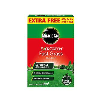 Miracle Miracle Gro Evergreen Fast Grass Lawn Seed 119618