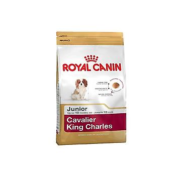 Royal Canin Hund Essen Cavalier King Charles Dry Mix 7,5 kg