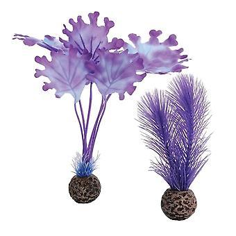 BiOrb Purple Kelp - Small