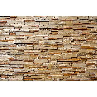 Fondo de pantalla Mural Piedra Pared II