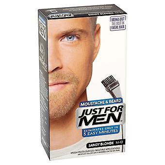 Apenas para homens 3 x apenas para homens escovam na cor facial do cabelo - louro de Sandy m10