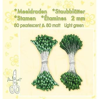 Leane Creatief Stamens Light Green