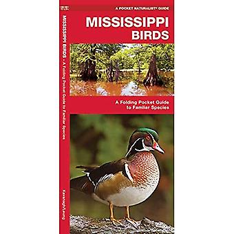 Mississippi Birds: An Introduction to Familiar Species