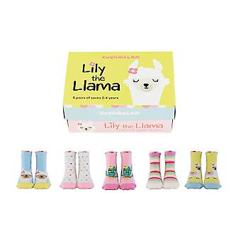 United odd socks lily the llama socks box