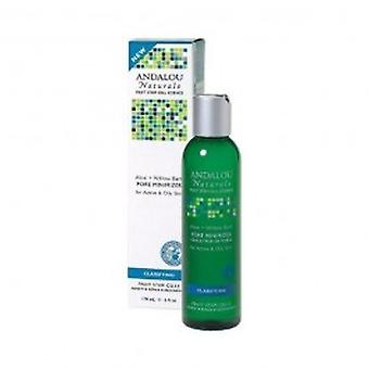Andalou - Aloe + Willow Bark Pore Minimizer