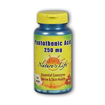 Nature's Life Pantothenic Acid, 250 mg, 100 tabs