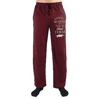 Fantastic beasts clothing harry potter sleep pants fantastic beasts apparel - harry potetr sweatpants fantastic beasts gift
