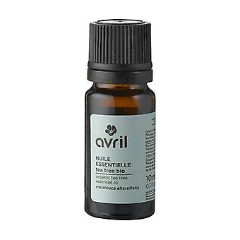 Organic Tea tree essential oil 10 ml of essential oil