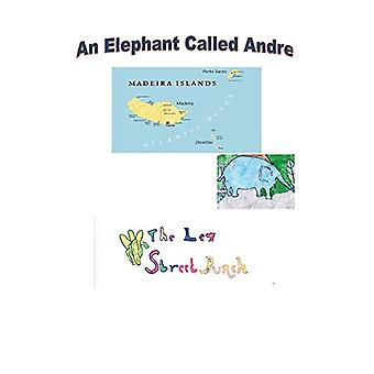 An Elephant Called Andre by Gedling Day Services - 9781789553512 Book