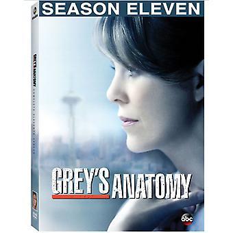 Greyn anatomia: Viimeistellään yhdennentoista kauden [DVD] Yhdysvallat tuomista