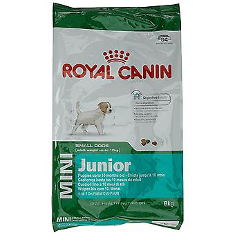 Royal Canin Mini Junior Trockenfutter - 8 kg