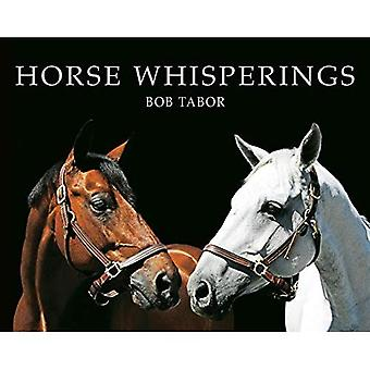 Sussurros de cavalo (pequeno formato): Retratos por Bob Tabor