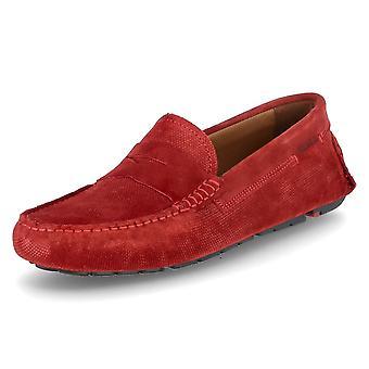 Lloyd Eljos 1041226 universal all year men shoes