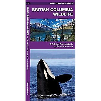 British Columbia Wildlife (Pocket Naturalist)