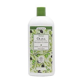 Olive Oil Shampoo Eco 250 ml